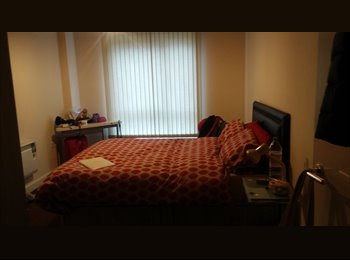 En suite (room with bathroom) to rent in the City Center