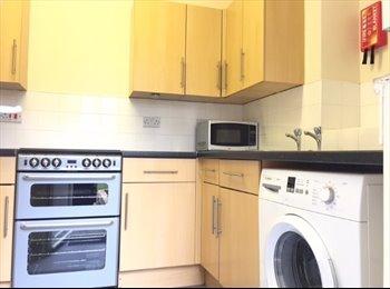 clean, cosy,  suit young prof,  ground floor garden flat