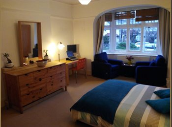 Huge double room for single use close to park