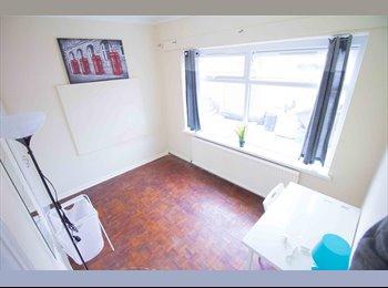 Bright Single Room in a Massive House