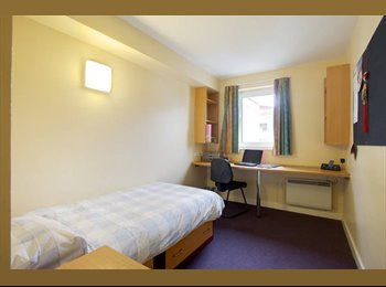 Must see student room ideal location