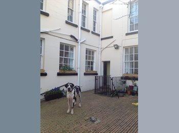 EasyRoommate UK - Room in detached house, Sefton Park - £500 pcm