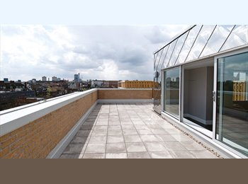 Great Student Accommodation in Camden!