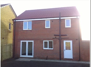 Brand New 4 Bed Professional House Share