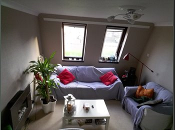 Cozy room to sublet in two beedroom West End Flat