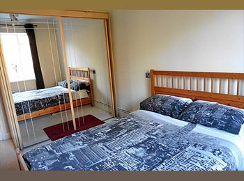 Large spacious double room to rent in beautiful apartment...