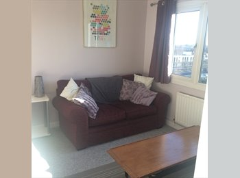 Lovely, large loft room to rent in family home in Forest...