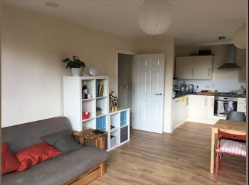 Very bright one bedroom flat in vibrant Hackney