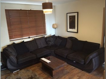 Spacious Room in Stylish Flat Close to City Centre