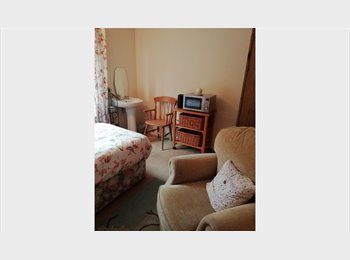 EasyRoommate UK - Single room available in Landlord's own home, Norwich - £312 pcm