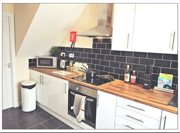 Large Double En-suite Room! Newly Renovated Property! South...
