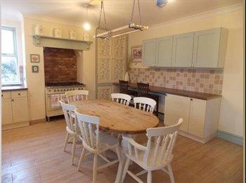 EasyRoommate UK - THE MILL HOUSE , Peterborough - £395 pcm