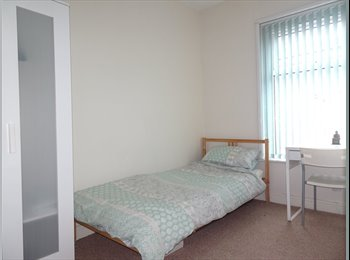 Fantastic Single Room In Immaculate House