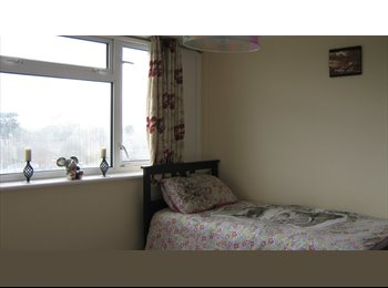 Double room in a house to rent