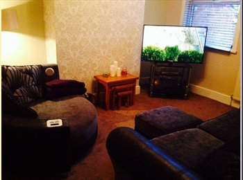Friendly, cosy house share with easy access to town and...