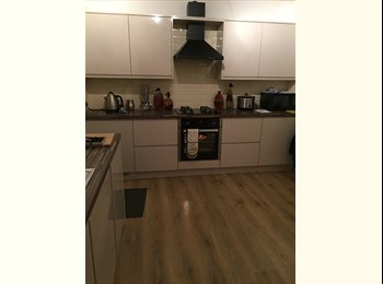 renovated 3 double bed house