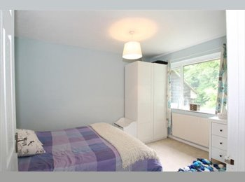 Nice 4 Bedroom House Share in Winchester
