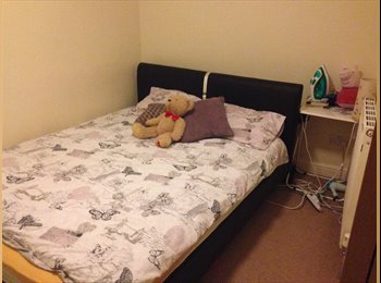 EasyRoommate UK - Room to rent in Doncaster, Doncaster - £240 pcm