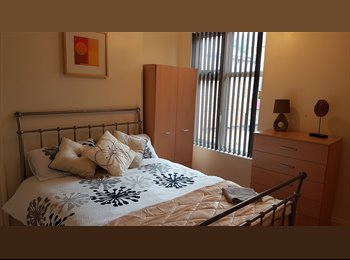Best Rooms Professional Brand New