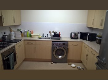 Room available to rent in Poundbury
