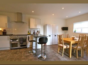 EasyRoommate UK - Beautiful all-inclusive double room in a professional, friendly house., Norcot - £500 pcm