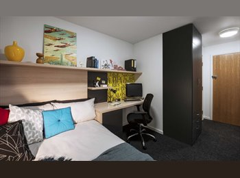 ensuite student room availble