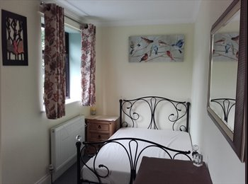 Furnished double bedrrom to let
