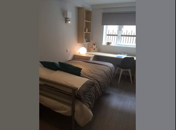 MODERN REFURBISHED STUDENT FLAT IN SHEFFIELD,