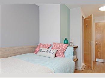 EasyRoommate UK - Student room for rent till end of june, Edinburgh - £530 pcm