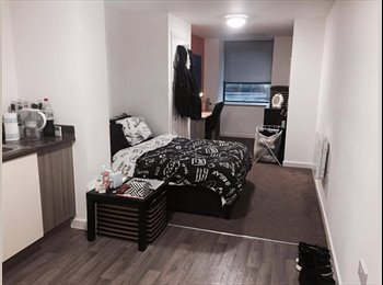 Cosy ensuit studio apartment