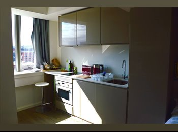 EasyRoommate UK - Cosy central flat, Sheffield - £600 pcm