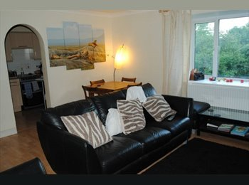 Furnished single £550 or double £800 room