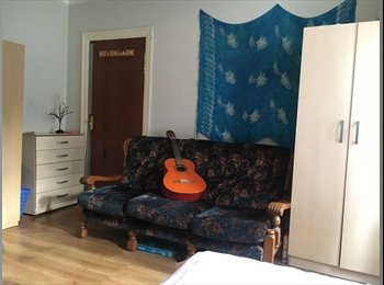 SINGLE BED IN TWIN ROOM, ONLY 85 pound, BIG, FRIENDLY...