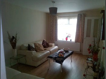 EasyRoommate UK - double room to let, Cottingham - £360 pcm