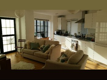 LUXURY DOUBLE room in friendly professional 2 bed...