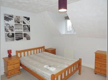 Spacious modern rooms to rent in Hampton, Peterborough, PE7