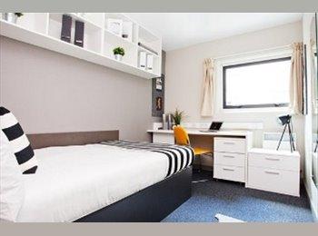 1 Ensuite Room 2mins walk from Hallam Uni -  £96/week...