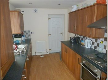 ROOM IN PROFESSIONAL HOUSE SHARE - £300pcm BILLS INC