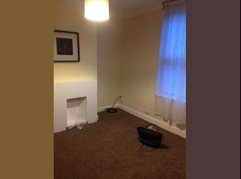 Beautiful and cheap house in Reading centre