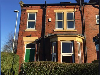 Double Room in Woodhouse £344pm including bills