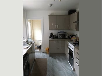 Furnished Double Room for Professional