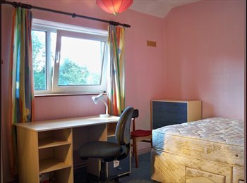 Superior 4 bed student house £366 pcm includes bills