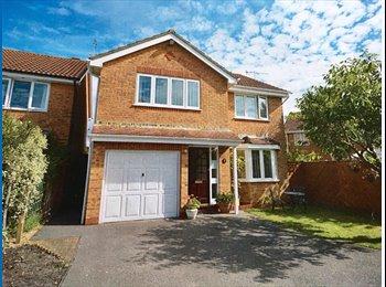 EasyRoommate UK - Fabulous Brand New House Share Opportunity, Broadstone - £540 pcm