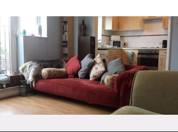 1 double bedroom in houseshare with a CLEANER to rent