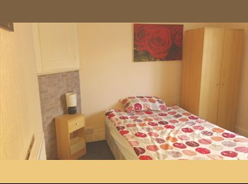 Large single room available in a 2 bedroom flat close to...