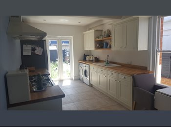Sunny single room in beautiful house in Shirley