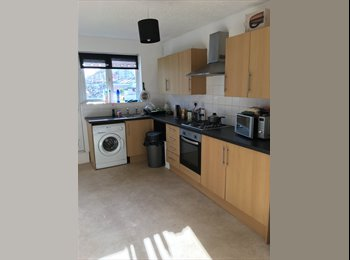 Stunning Room to Let in a Fay