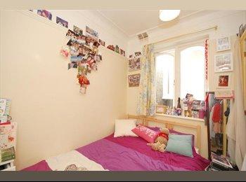 Single room in big house