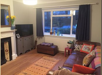 Beautiful room in newly redecorated flat