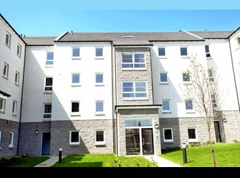 Spacious double bedroom to rent in Urquhart Court